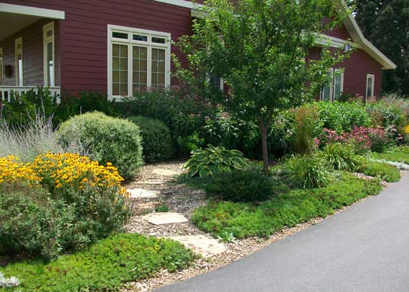 Professional yard design and landscaping