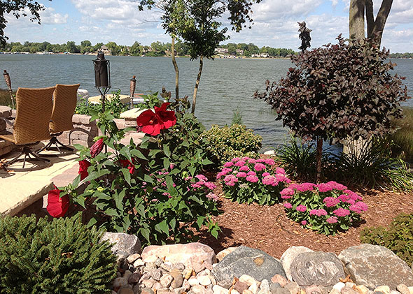 Lakeside garden with blooming flowers