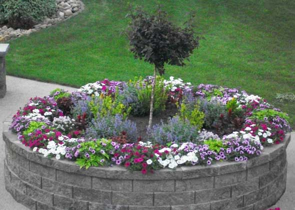 Decorative potted plants, flowers, shrubs, and trees